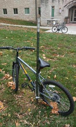 这智商基本上就告别自行车了